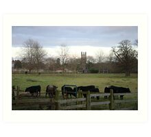 Agricultural College Art Print