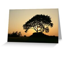 Sunset with a Tree Greeting Card