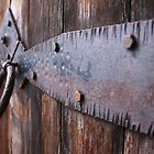 Rusty Hinges by Randy Richards