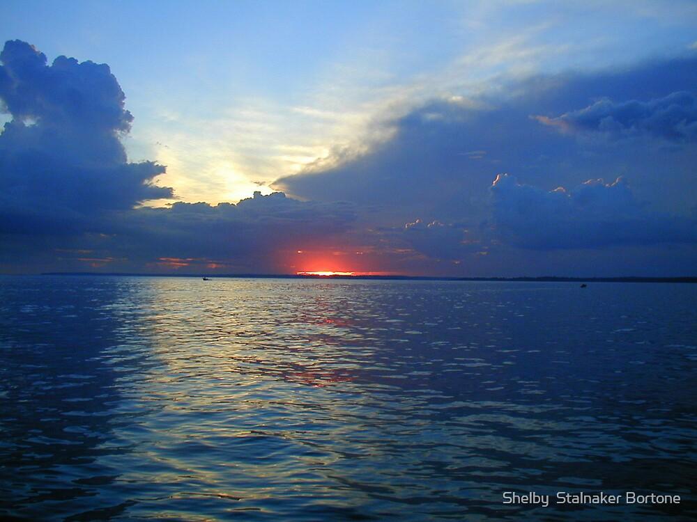 Sunrise on Amazon by Shelby  Stalnaker Bortone