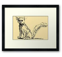 Cute Kitty Pen and Ink Framed Print