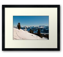 winter scenics Framed Print