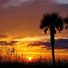 Sunset Silhouette by Sandy Keeton