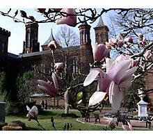 Smithsonian Castle Photographic Print