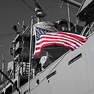 Stars and Stripes by INFIDEL