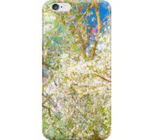 Spring feast iPhone Case/Skin