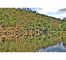 Reflection - Royal National Park - The HDR Experience Photographic Print