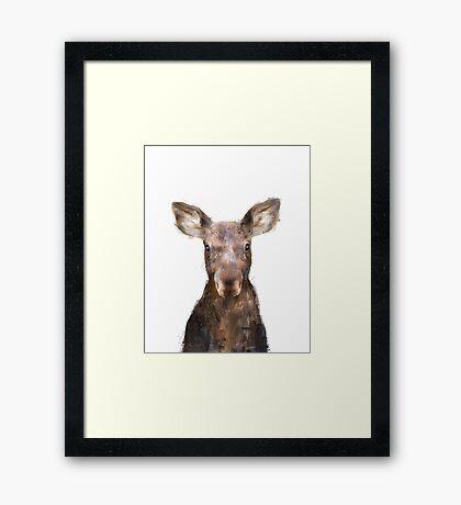 Little Moose Framed Print