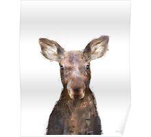 Little Moose Poster
