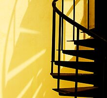 Spiral Staircase @ Noon Time by Steven  Siow