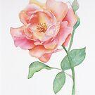 Rose by cheetaah