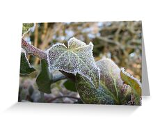Frosty Ivy Greeting Card