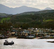 Strangford, County Down by Alan McMorris