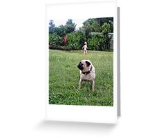 The Pug and Her Boy Greeting Card