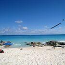 Still Beach by Jared Walker