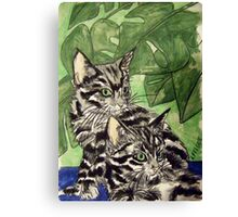Tabby Kittens Canvas Print