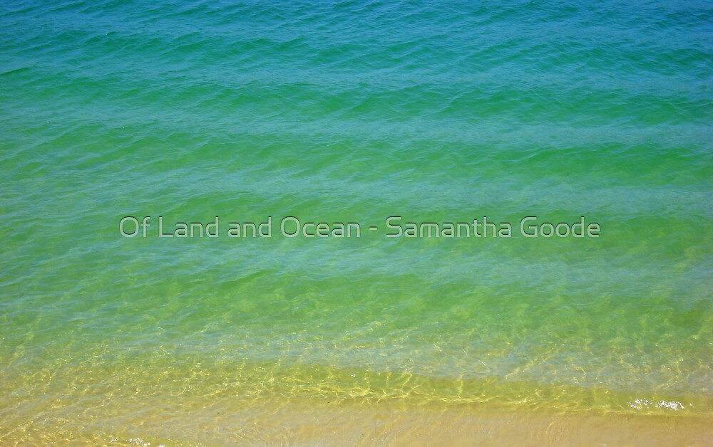 Summer time by Of Land & Ocean - Samantha Goode