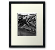 Lido - Venice  Framed Print