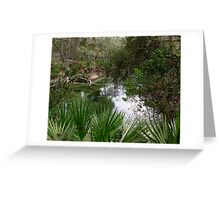 beautiful blue springs Greeting Card