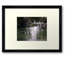 leading to the springs Framed Print