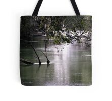 leading to the springs Tote Bag