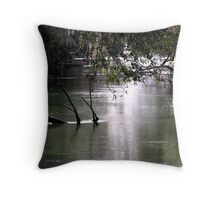 leading to the springs Throw Pillow