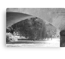 Curves, water and willow trees Canvas Print