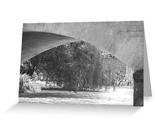Curves, water and willow trees Greeting Card