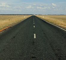 Another 400 kilometres to go by halogen