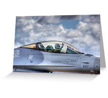 Falcon Pilot Greeting Card