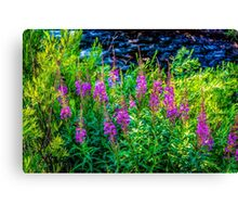Along Gore Creek Canvas Print