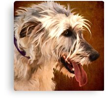 """Luck of the Irish Wolfhound"" Canvas Print"