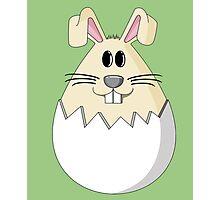 Easter Bunny Egg Photographic Print