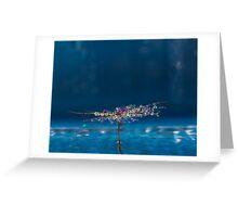 Waterdrop Jewels Greeting Card