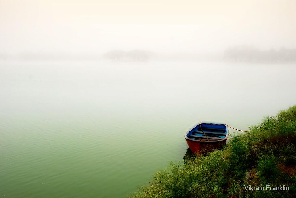 Alone by Vikram Franklin