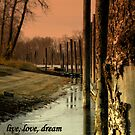 live, love, dream by Cricket Jones