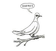 """Nevermore"" quoth the dove Photographic Print"