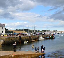 Summer Days in Strangford by oulgundog