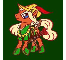 Robin Hood Pony Photographic Print