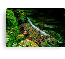 """Just a Trickle"" Canvas Print"