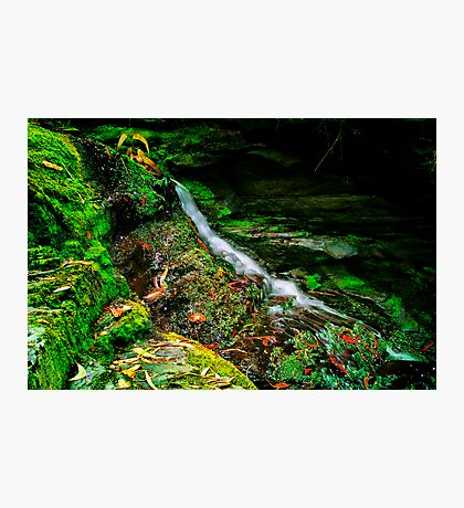 """Just a Trickle"" Photographic Print"