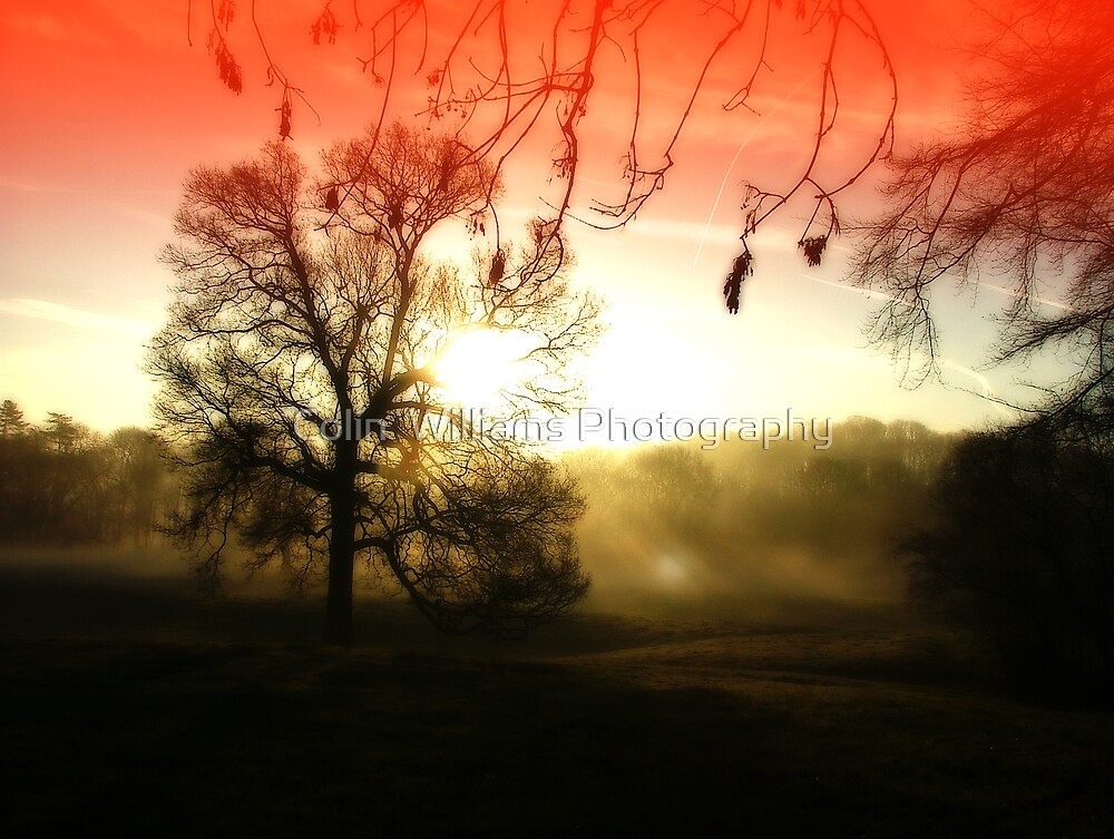 Misty Morning Revisited by Colin  Williams Photography