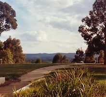 Coronet Park Pathway, Wyong, NSW by John Howard Reid