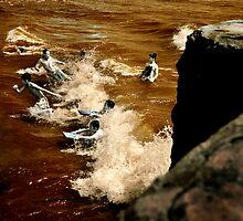 It's Surf Time by John Felix
