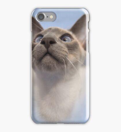 Blue-Point Siamese iPhone Case/Skin
