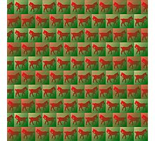 Red horses pattern Photographic Print