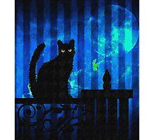 Gothic Cat Photographic Print