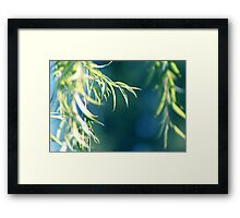 Third Thought Framed Print