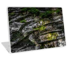 SURFACE [Laptop skins] Laptop Skin