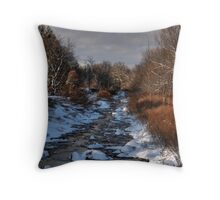 Earth Teach Me Throw Pillow